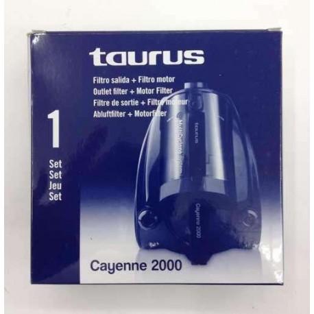Filtro de aspirador Taurus Cayenne 2000